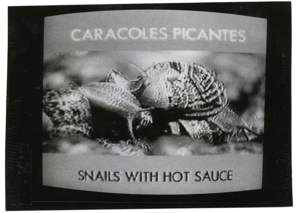 video-menu-caracoles